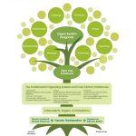 Functional Medicine Tree Infographic