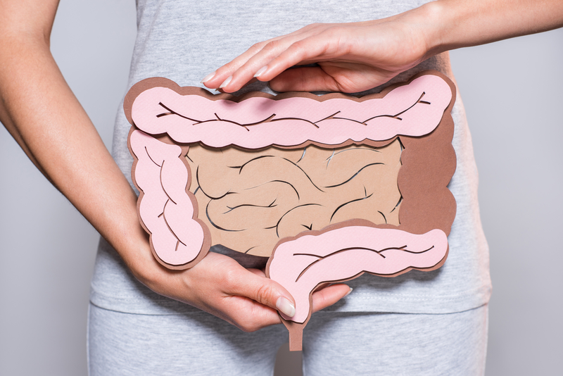 A woman holding paper example of intestines in front of her abdomen.